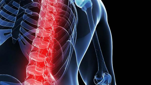 Esse diferencial da Amil está revolucionando a qualidade de vida das pessoas. As Unidades de Correção Postural são modernos centros de diagnóstico, tratamento e prevenção de patologias posturais (dor nas […]
